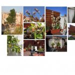 les-exterieurs-la-terrasse